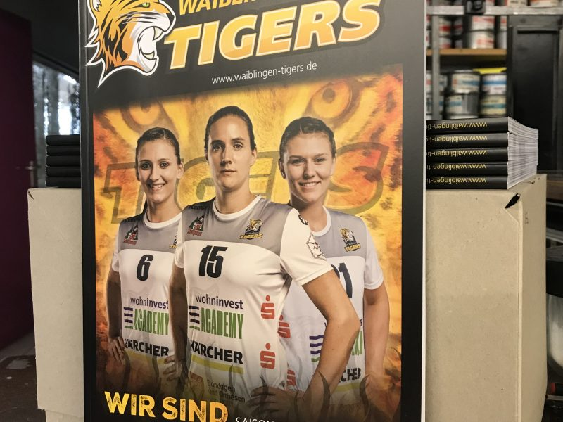 VfL Waiblingen TIGERS